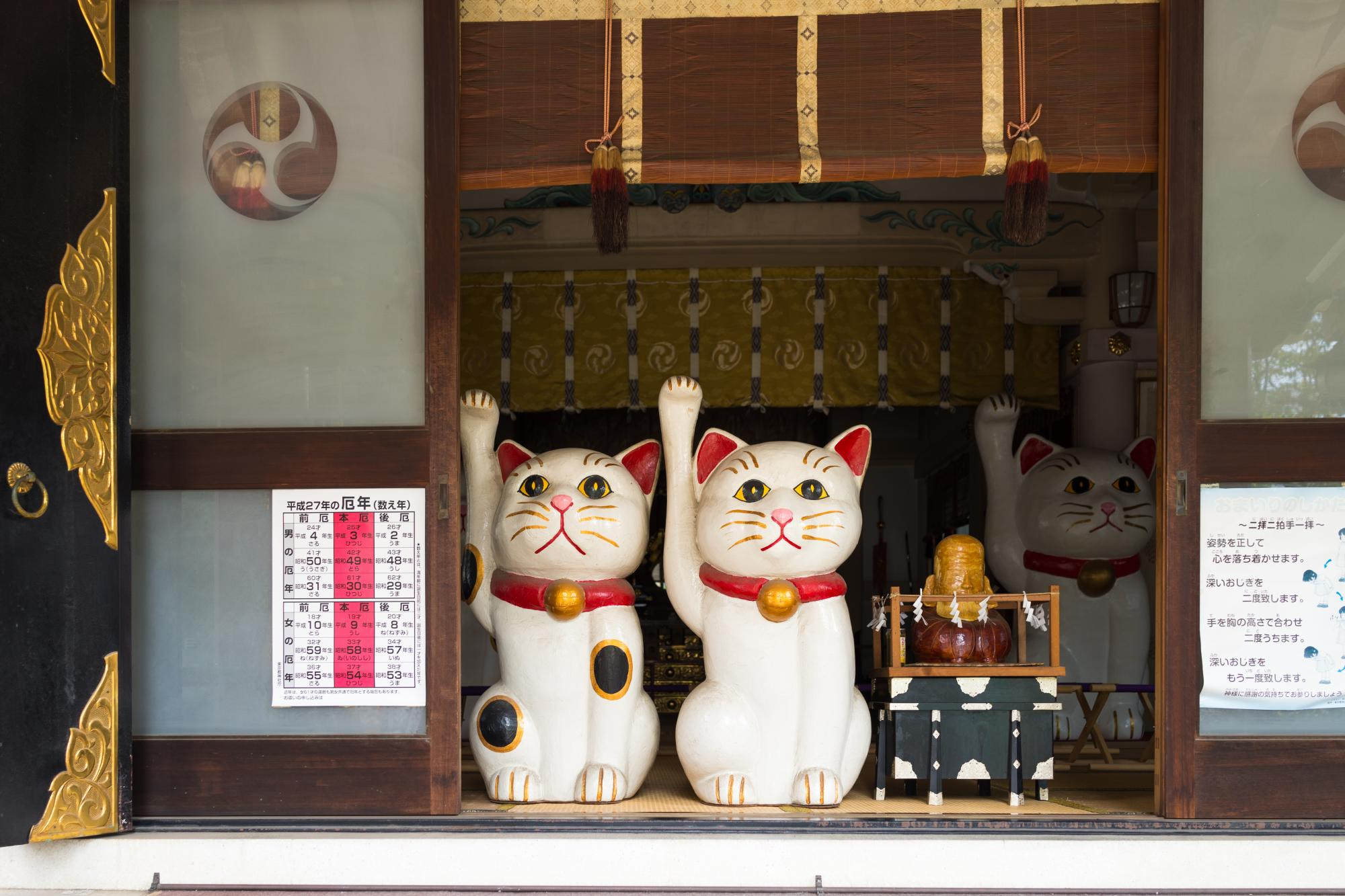「cat temple asakusa」の画像検索結果